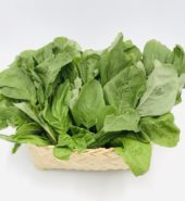 Green Spinach(Pack)