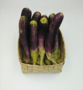 Organic small Egg Plant from The Croft Organic Farm
