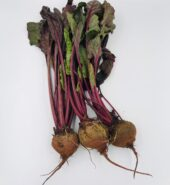 Organic Beetroot from The Croft Organic Farm