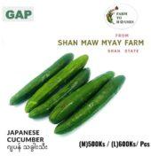 Japanese Cucumber (kg)