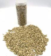 Pumpkin Seed(200g)